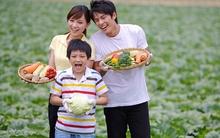 5 sai lầm trầm trọng của cha mẹ về việc cho con ăn