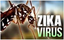 Khánh Hòa thêm người nhiễm Zika, 3 người chết vì sốt xuất huyết