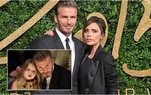 David Beckham không dám nghĩ tới cảnh Harper hẹn hò