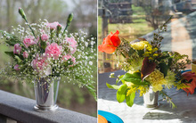 2 cách cắm hoa đơn giản với cốc trang trí nhà đẹp xinh