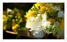 Tự làm bó hoa cưới giản dị mà tinh tế