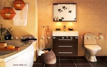 Những kiêng kị khi thiết kế toilet và cách