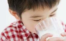 Cho bé uống sữa dê có tốt hơn sữa bò không?