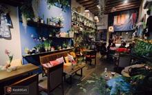 2 quán cafe xanh mướt đầy mát lành giữa Hà Nội ồn ào