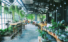Hà Nội có hàng ngàn quán cafe, nhưng muốn tìm an yên phải đến 8 quán này