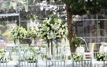"""Cặp đôi ở Hà Nội khiến khách mời """"đứng hình"""" vì trang trí đám cưới tuyệt đẹp với hoa màu trắng"""