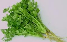 Những người không nên ăn rau mùi để tránh hậu quả đáng tiếc