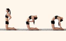 """""""Đánh bay"""" bệnh đau lưng dưới với 5 tư thế yoga dễ tập"""