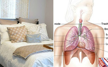 Làm ngay 8 việc này trong phòng ngủ để tránh rước bệnh vào thân