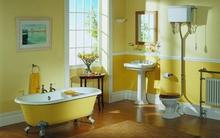 Mãn nhãn với 12 phòng tắm lung linh đầy sắc màu