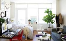 9 bí kíp không thể bỏ qua khi trang trí căn hộ nhỏ
