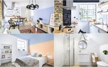 Cuộc sống ấm áp bên trong căn hộ nhỏ mang phong cách chiết trung