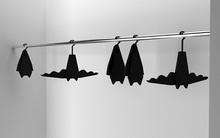 10 mẫu móc treo quần áo đẹp - độc - lạ ai nhìn thấy cũng muốn sở hữu