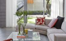 Tư vấn bố trí nội thất căn nhà 15m² hiện đại và đầy đủ các không gian chức năng