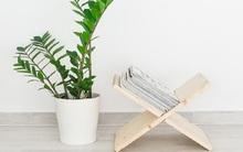Biến tấu độc đáo từ gỗ tô điểm cho không gian sống