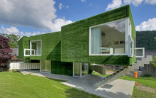 Choáng ngợp trước căn biệt thự được phủ kín cỏ xanh