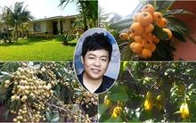Khu vườn hoa quả sai trĩu cành của nam ca sĩ Quang Lê