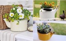 Những ý tưởng tái sử dụng ấm đun nước cũ đẹp hoàn hảo