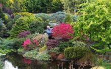 Bỏ ra 25 năm để biến bãi cỏ trống thành khu vườn đẹp như cổ tích