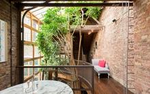 7 ý tưởng đơn giản giúp mang thiên nhiên vào nhà