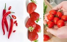 Thực phẩm màu đỏ có nhiều lợi ích nhất