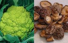 6 thực phẩm tăng cường sức đề kháng và miễn dịch cho cơ thể