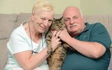 Cận cảnh con mèo già nhất thế giới