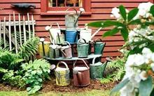 5 ý tưởng thú vị và đơn giản để làm đẹp khu vườn nhà bạn
