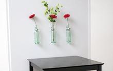 3 tiện ích làm đẹp cho ngôi nhà của bạn từ vỏ chai cũ