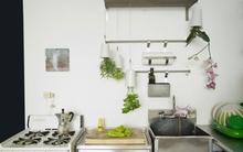 3 mẫu chậu cây cảnh giúp nhà bạn ấn tượng hơn