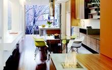 Tư vấn thiết kế để nhà 33m² có giếng trời và nhiều cây xanh
