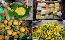 Những thức quà đong đầy hương sắc mùa thu của tháng 9 Hà Nội