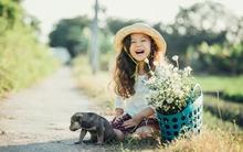 Ngắm bộ ảnh đáng yêu của thiên thần nhí Việt lai Úc xinh đẹp bên cúc họa mi