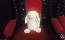 Cô bé bỏ quên chú thỏ bông ở khách sạn, và điều khó tin đã xảy ra