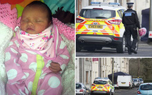 Xót xa bé 6 ngày tuổi bị chó kéo ra khỏi xe nôi cắn chết