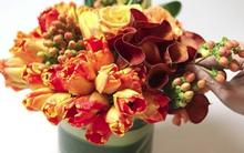 Cắm hoa sắc cam trang trí nhà nổi bật