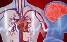 Thử nghiệm giúp xác định thời điểm bạn có thể lên cơn đau tim