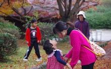 """Mẹ Việt ở Nhật: """"Dẹp hết"""" các phương pháp giáo dục đi và hãy làm điều này cho con hàng ngày"""