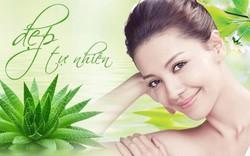 Những thành phần thiên nhiên tốt cho làn da phụ nữ