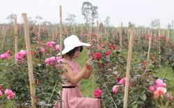 Khởi nghiệp từ hoa hồng ngoại và sự thành công ngoài mong đợi của cô gái trẻ 9x