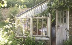 Ngắm 8 ngôi nhà kính xinh yêu này, dù không thích làm vườn, bạn cũng phải đem lòng tương tư