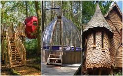 9 căn nhà nhỏ khiến bạn bỏ lại thành thị ồn ào để hòa mình vào với thiên nhiên