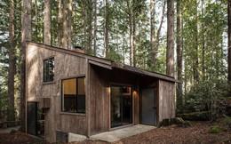 Ngôi nhà gỗ nằm giữa rừng Redwood gây thương nhớ vì vẻ đẹp hiện đại của mình