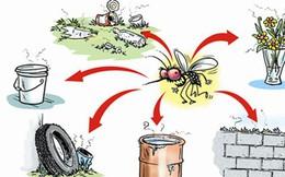Cách phòng bệnh sốt xuất huyết khi thời tiết vẫn liên tục nắng nóng kèm mưa nhiều