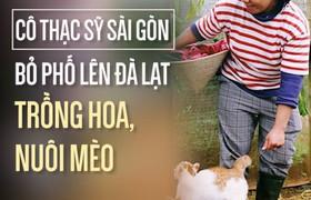 Cô thạc sỹ Sài Gòn bỏ phố lên Đà Lạt trồng hoa, nuôi mèo