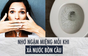 Nhớ ngậm miệng lại mỗi khi xả nước bồn cầu