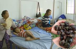 Ăn ốc bươu vàng tái chanh, 4 em nhỏ bị viêm màng não