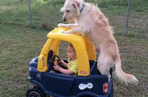 Tan chảy trước những khoảnh khắc ngọt ngào của trẻ bên thú cưng