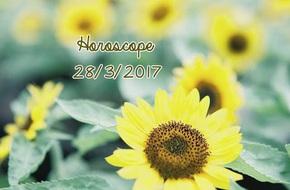 Thứ Ba của bạn (28/3): Sư Tử hãy chịu khó tiếp thu