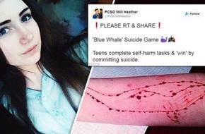 Cá voi xanh, trò chơi thử thách bệnh hoạn khiến hơn 100 bạn trẻ tự sát
